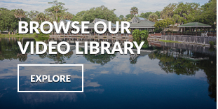 Browse the Trilogy Video Library
